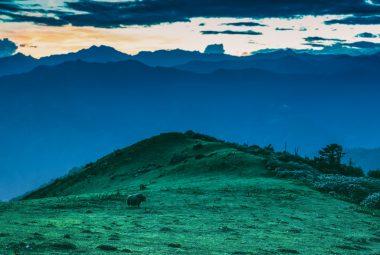 West To East Bhutan Tour 15 Days